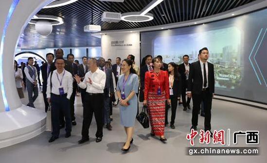 2019中国—东盟创新与科技合作高峰交流会在南宁举行.jpg