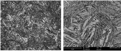 图1  该钢经过等温淬火后获得的下贝氏体的微观形貌.png